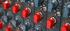 Chandler Limited Mini Rack Mixer Expander