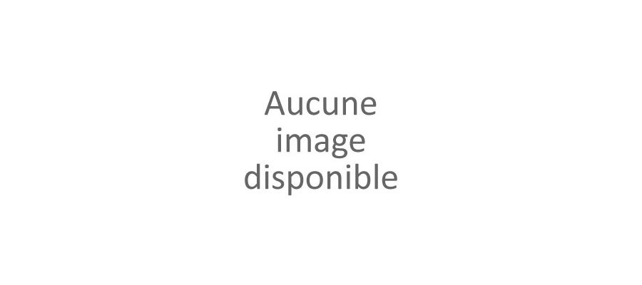 Préampli + EQ Format 500